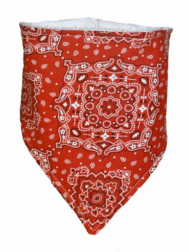 Red Bandana Bib